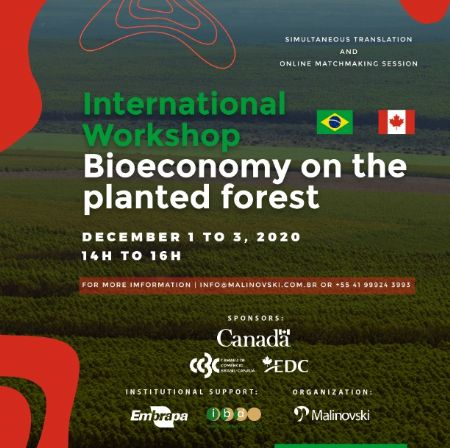 Internacional Workshop Bioeconomy on the planted forest