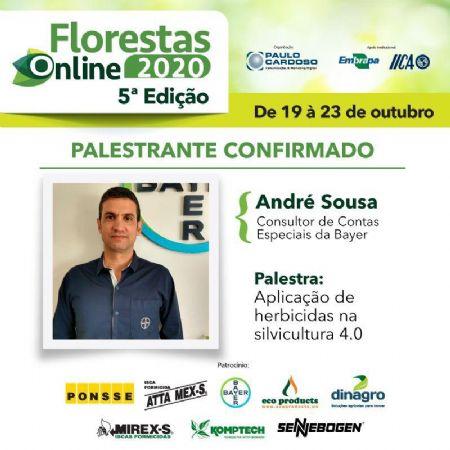 Floresta Online 2020