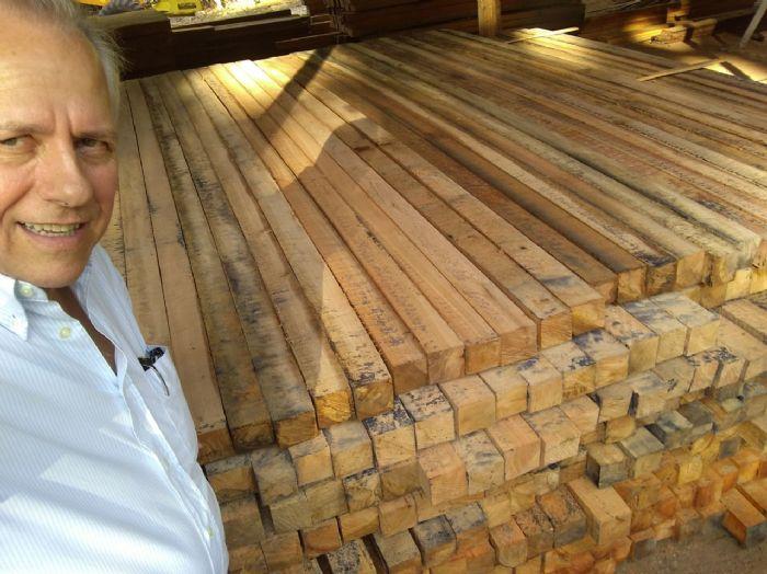 OPORTUNIDADE: Venda de madeira de eucalipto